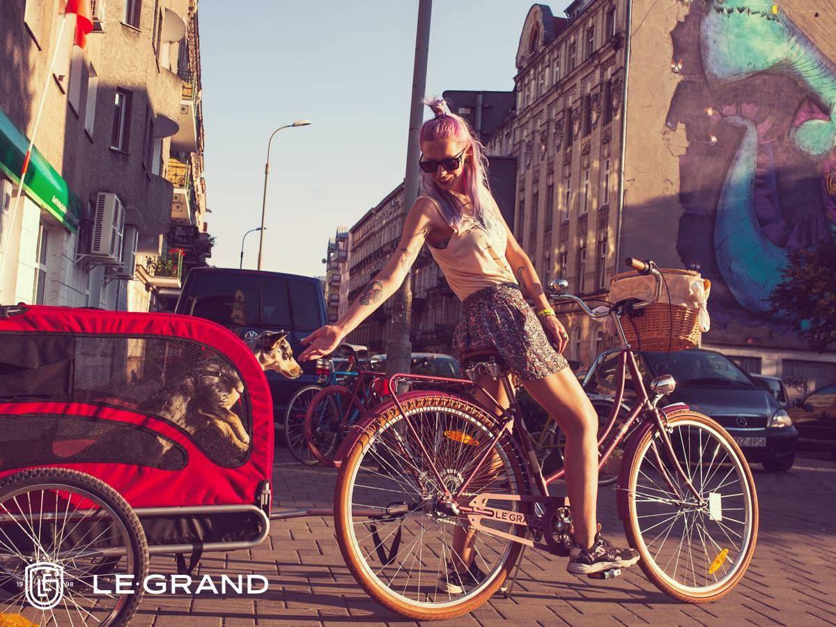 le grand virginia 3 rower miejski